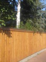 Glattkantbretter Douglasie A-Qualität 18x140 mm